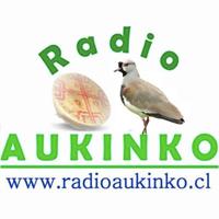 Radio Aukinko